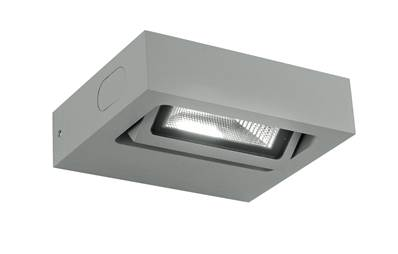 Applique murale LED BETA 3W 3000K 250lm 120° Orientable IP54 en Aluminium Argenté